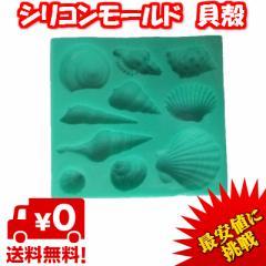 【最安値に挑戦】レジン 型 シリコンモールド アクセサリーパーツ パーツ 作成 シリコン モールド  抜き型 キット 貝殻 薄型
