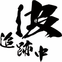カッティングステッカー サーフィン 車 バイク カッコイイ カスタム 目立つ カスタム【波 追跡中 (2枚1セット)・2(SP)】【メール便】