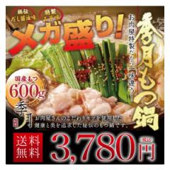 メガ盛り博多もつ鍋セット 送料無料 (新鮮国産もつ600g)