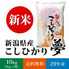 【新米】新潟県産コシヒカリ 白米 10kg(5キロ×2袋)【送料無料】《 29年産 夢 お米 10kg 10キロ 》