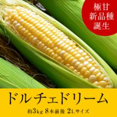 ≪送料無料≫『ドルチェドリーム とうもろこし』 北海道産 約3kg 8本前後 ※冷蔵 ☆
