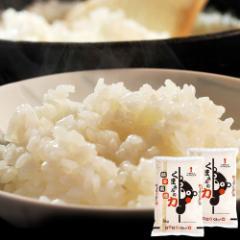 《送料無料》熊本県産 『くまさんの力』 白米 10kg(5kg×2袋)※常温 ○