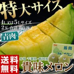 《送料無料》千葉県・飯岡産 貴味メロン(青肉) ...