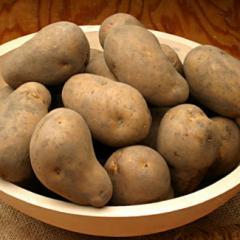 ◆【新生活】違うね〜◆北海道産 じゃがいも インカのめざめ 10kg/芋/野菜/食品/送料無料(NOSAN_23)