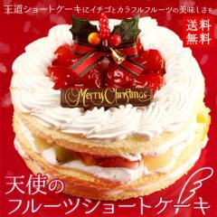 クリスマスケーキ 2017 天使のフルーツショートケーキ5号サイズ ギフト プレゼント 早割 早期割引 予約(11月26日まで早割中)