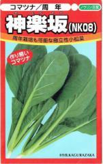 日本農林社 コマツナ 神楽坂 10ml【郵送対応】