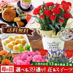 母の日 花とセット ギフト 花 送料無料 花鉢など13種から選べるお花 カーネーション ラベンダー ベルフラワー・プリザーブドフラワー