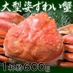カナダ産 大型姿ずわい蟹 1尾 (約600g)※冷凍  ☆