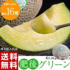 《送料無料》熊本県八代産 超特大メロン 肥後グリーン 1玉 約1.8kg ※常温 ☆