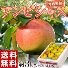 《送料無料》りんご 青森県産 「アンビシャス」 約3kg (9〜12玉) ※常温 ☆