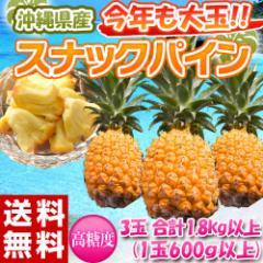 《送料無料》沖縄県産 スナックパイン 3玉 (1玉約600g以上)合計1.8kg ○