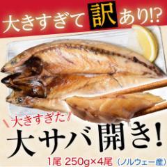 大きすぎた「大サバ開き」!!4尾 ※冷凍 ○