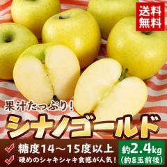 送料無料 長野県産 青森県産 シナノゴールド 約2.4kg  (約8玉前後)  しなのゴールド りんご リンゴ 林檎 フルーツ 旬 果物