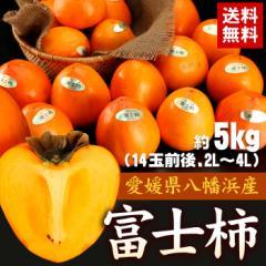 送料無料 フルーツ 愛媛県産 柿 富士柿 約5kg 14玉前後 かき カキ ギフト プレゼント