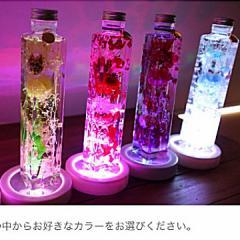 ハーバリウム LED 照明付 お部屋を美しく演出