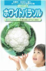 武蔵野種苗園 カリフラワー ホワイトパラソル 1ml【郵送対応】