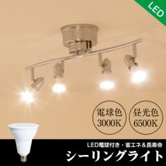 LEDシーリングライト スポットライト ダクトレール E11口金 ハロゲン 50w形相当 電球色 昼光色6畳 8畳 角度調節