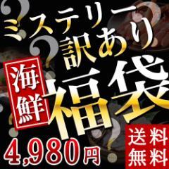 ミステリー福袋 約10,000円相当 送料無料 かに/カニ/訳あり/セット