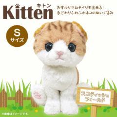 ぬいぐるみ 猫 キトン スコティッシュフォールド ブラウン【P-4222】Kitten たれ耳 お座り ねそべり ぷっくり肉球 サンレモン