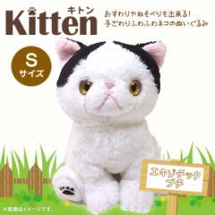 ぬいぐるみ 猫 キトン エキゾチック ブチ【P-4252】Kitten お座り ねそべり ぷっくり肉球 サンレモン