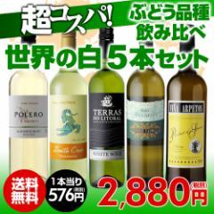 ワインセット 白5本 世界のぶどう品種飲み比べ 超コスパ白ワインセット 3弾【送料無料】[ワインセット][長S]