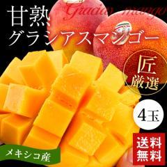 果物 マンゴー 送料無料 数量限定 メキシコ産 甘熟 アップルマンゴー 4玉 旬 完熟 果実 フルーツ 航空輸入  期間限定