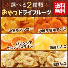 送料無料 全5種から選べる2種類 ドライフルーツ  お試しセット ミックス マンゴー メール便