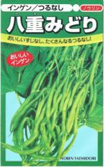 日本農林社 つるなしインゲン 八重みどり 1dl【郵送対応】