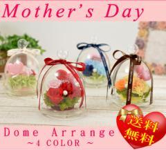 【母の日限定デザイン】プリザーブドフラワー ドームアレンジ 母の日ギフト 母の日 お花 4カラー