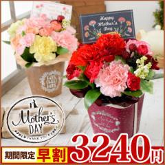 母の日ギフト 花 2018 選べる 母の日 生花フラワーアレンジメント うちのお母さんは元気なレッド&ピンク?優しいパステル?