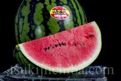 《送料無料》新潟県産「八色西瓜(やいろすいか)」 Lサイズ 2玉 合計約13kg 秀品 ☆