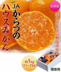 佐賀県産 JAからつのハウスみかん 約1kg(11〜15玉)化粧箱 ○