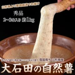 「自然薯」 佐賀・茨城・山形産他 1本 約700g ※常温 ○