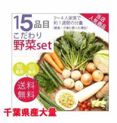 千葉県旬の野菜を詰め合わせた(野菜セット)15種/送料無料