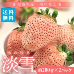 送料無料 熊本県産 大粒 白いちご 淡雪(あわゆき) 2パック 苺 イチゴ 贈答用 ギフト