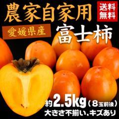 送料無料 フルーツ 愛媛県産 農家自家用 柿 富士柿 約2.5kg 8玉前後 かき カキ(gn)