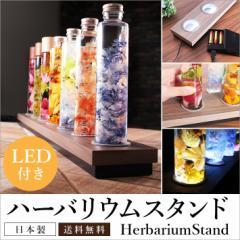 【ハーバリウム スタンド 50cm LED照明付き 化粧板PB材 】 LEDインテリア 幅50cmX奥行9cm ボトル型4.5cm対応
