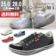 即納 あす着 送料無料 スニーカー ローカット メンズ 靴 WILD NATURE 2790-01/2790-02