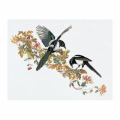 Thea Gouverneur クロスステッチ刺繍キット No.1075 「Magpie」(カササギ 鳥) オランダ テア・グーヴェルヌール 【取り寄せ/納期40〜80日