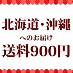 北海道・沖縄へお届け 送料分【送料】【送料900円】
