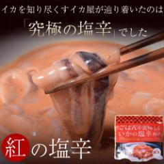 イカ屋が作った究極のプレミアム塩辛「紅の塩辛」200g ※冷凍  ○