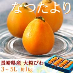 びわ 長崎県産「なつたより」秀品 大粒3〜5L(12〜16玉) 約1kg ※冷蔵
