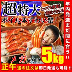 【メガ盛り】ずわい蟹5kg 超特大 身入り抜群♪3〜6Lサイズ ボイル済み 送料無料《※冷凍便》_森源商店