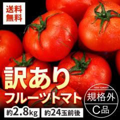 トマト 茨城県産 訳あり フルーツトマト 約2.8kg 規格外 C品 送料無料 フルーツ 果物 野菜