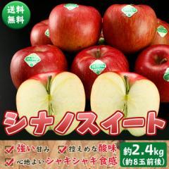 送料無料 シナノスイート 約2.4kg  (約8玉前後)  しなのスイート りんご リンゴ 林檎 フルーツ 旬 果物 どっさり お得