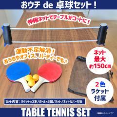 卓球 テーブルテニス ピンポン 室内 RED-PINPON【6931】 おウチde卓球セット ネット 2色ラケット ボール ゲーム plus3