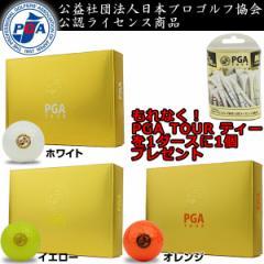 期間限定!日本プロゴルフ協会公認ライセンスグッズをプレゼント!PGA TOUR ハイテクノロジー 2ピース ゴルフボール (12球入り)