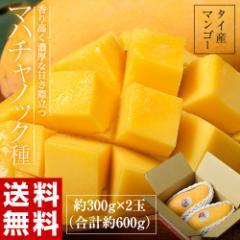 《送料無料》タイ産マンゴー「マハチャノック」 約300g×2玉 合計約600g ◯