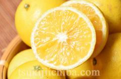 柑橘 和歌山・早和果樹園の「黄金柑(おうごんかん)」小〜大玉 秀品 約3kg ※常温・送料無料