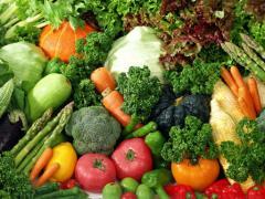 ☆畑直送新鮮野菜☆こだわり有機栽培お試しセット7品+果物をプレゼント